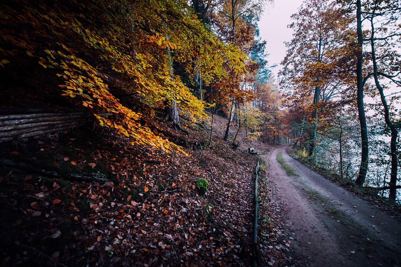 Thomas_Bechtle_Fotograf-20151028-093120-TB8_7231